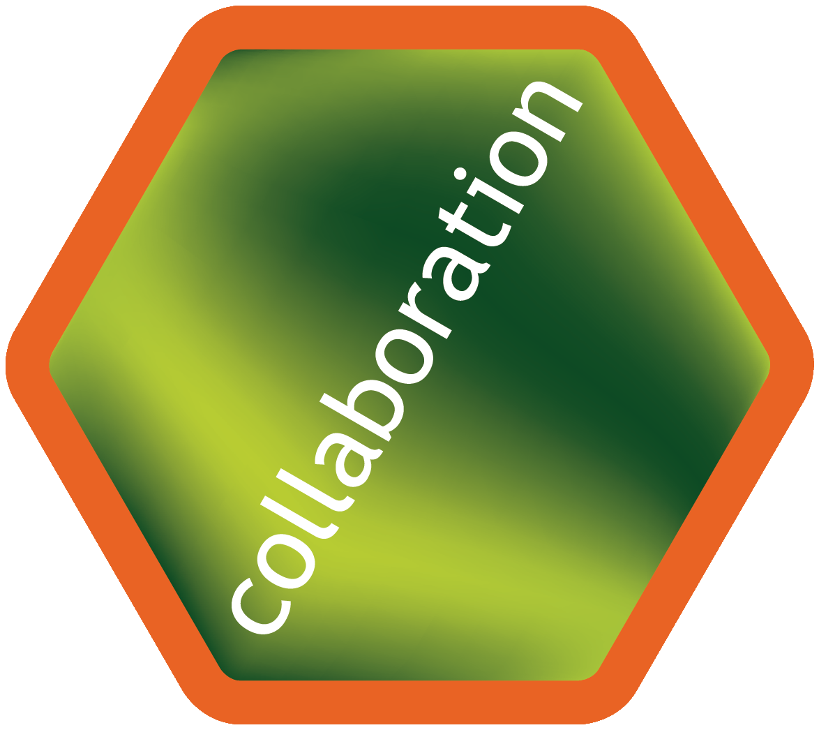 Hexagon orange collaboration
