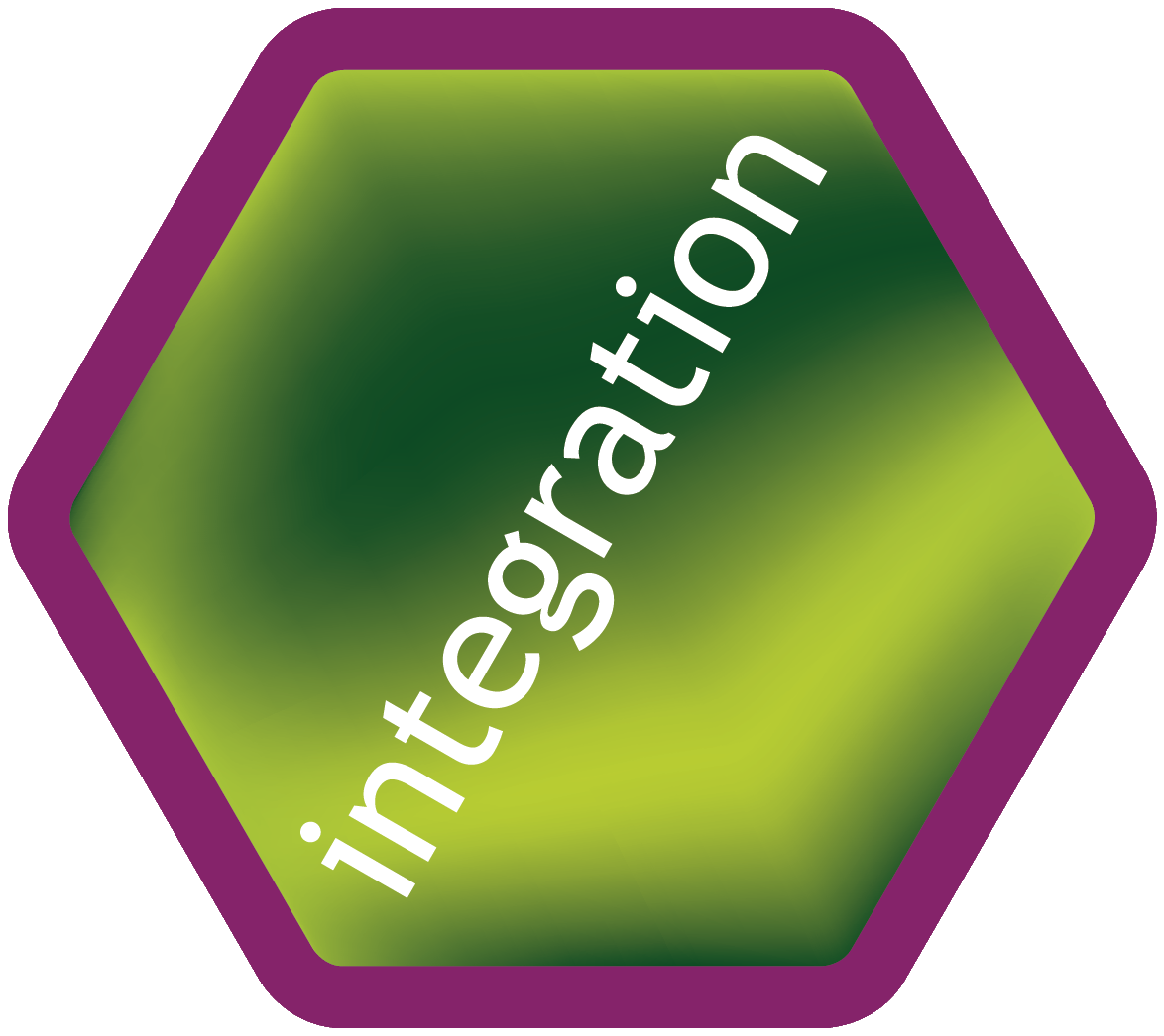 Hexagon purple Integration