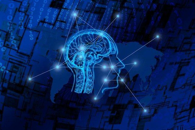 digital brain image